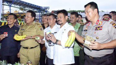 Photo of Mentan Syahrul Dorong Lampung Jadi Pusat Komoditas Buah Tropis