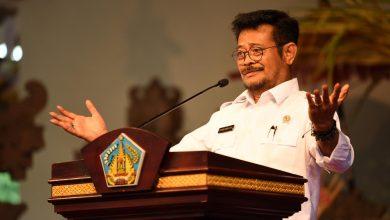 Photo of Mentan Dukung Provinsi Bali Kembangkan Program Sejuta Sapi