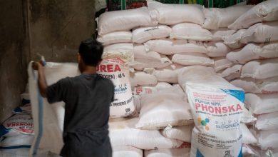 Photo of Kementan: Pupuk Sangat Cukup, Ingatkan Pemda Segera Percepat Realisasi