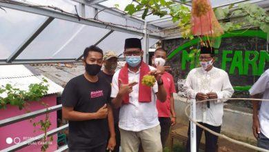 Photo of Imam Budi Hartono Dorong Warga Kembangkan Tanaman Pangan
